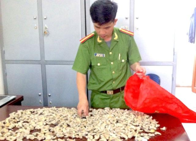 Bắt giữ thanh niên 9x có gần 700 móng vuốt hổ - 1