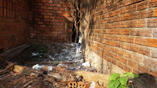 Hơn 2 tháng mới biết có xác người phân hủy cạnh nhà - 1