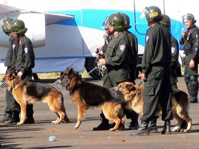 100 cảnh sát cùng chó nghiệp vụ vây ổ ma túy Bình Thuận - 1