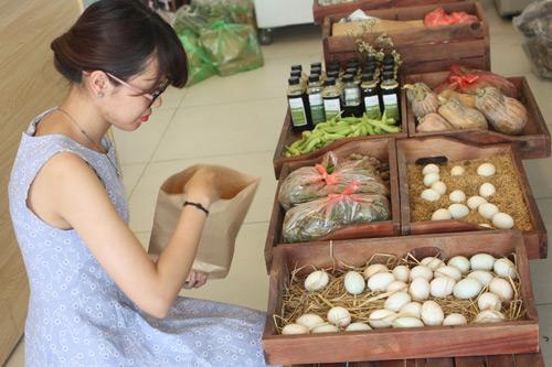 Cô gái bỏ lương 50 triệu/ tháng, về quê trồng rau sạch - 4
