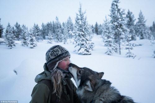 Cô gái bỏ thành phố để sống cùng 85 con chó kéo ở Bắc cực - 1