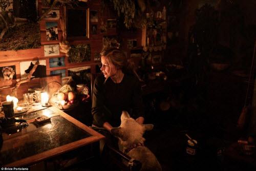 Cô gái bỏ thành phố để sống cùng 85 con chó kéo ở Bắc cực - 2