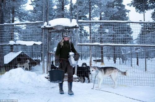 Cô gái bỏ thành phố để sống cùng 85 con chó kéo ở Bắc cực - 7