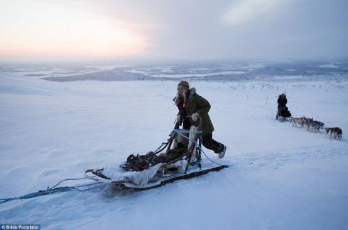 Cô gái bỏ thành phố để sống cùng 85 con chó kéo ở Bắc cực - 8