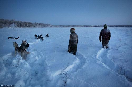 Cô gái bỏ thành phố để sống cùng 85 con chó kéo ở Bắc cực - 13