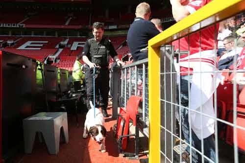 Man City hòa, trận MU - Bournemouth chỉ còn là thủ tục - 14
