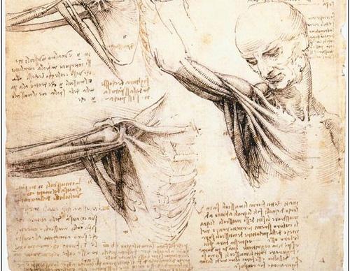 Những bí mật xoay quanh các bản thiết kế của Leonardo da Vinci - 10