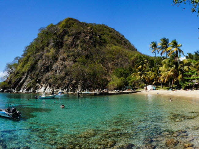 Pain de Sucre là một trong những bãi biển hoang sơ nhất trên quần đảo Guadeloupe thuộc Pháp. Sau khi mất khoảng 15 phút đi bộ để tới bãi biển, du khách có thể ngâm mình trong nước trong vắt và ngắm cá bơi lội, san hô ở phía dưới.