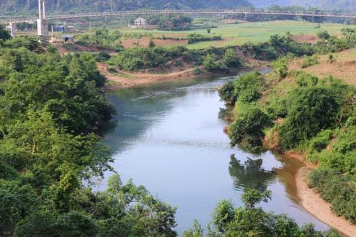 Cá nuôi trên sông Bưởi tiếp tục chết bất thường - 3