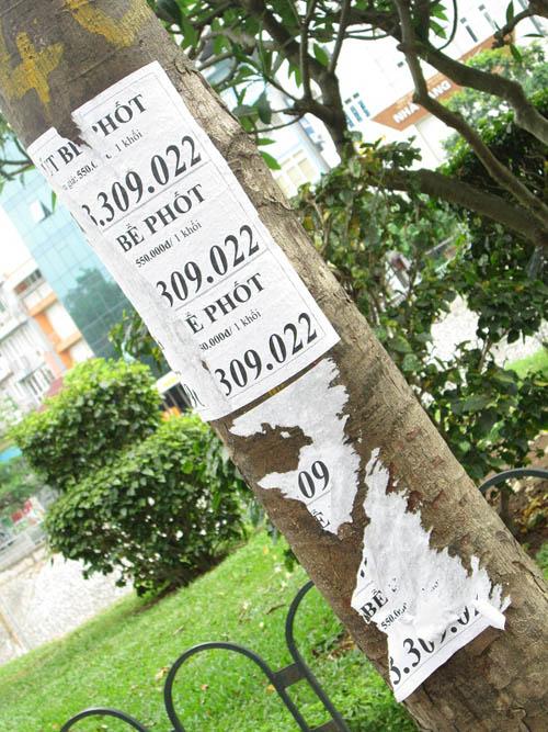 """Hình ảnh luộm thuộm của """"ma trận"""" quảng cáo ở Hà Nội - 14"""