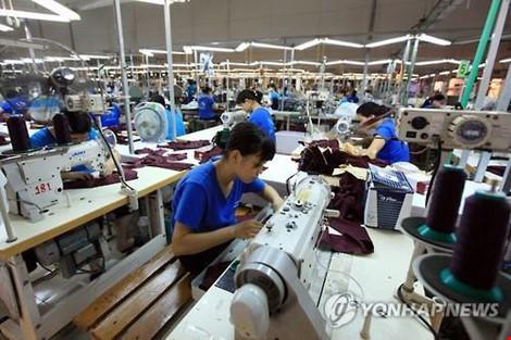 Hàn Quốc sẽ mở lại thị trường lao động cho người Việt Nam - 1