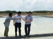 Thị trường - Tiêu dùng - 110.000 tấn muối Cần Giờ chờ giải cứu
