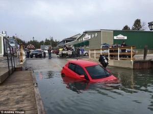 Công nghệ thông tin - Lái xe theo GPS, cô gái lao thẳng xuống hồ sâu 30m