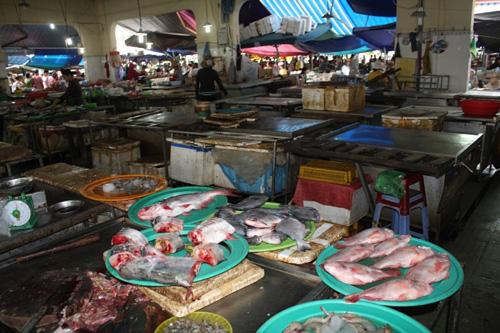 Không có chuyện gà chết do ăn cá biển ở Đà Nẵng - 1