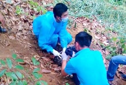 Phát hiện xác người trơ xương trên đèo Chuối - 1