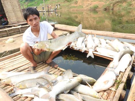 """Vụ ô nhiễm sông Bưởi: Phạt 4 tỉ, buộc """"rửa"""" sạch ô nhiễm - 1"""