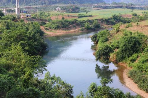 Vụ cá chết trên Sông Bưởi: Chờ sông tự sạch? - 2