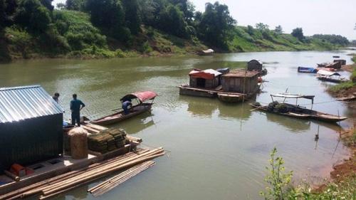 Vụ cá chết trên Sông Bưởi: Chờ sông tự sạch? - 3