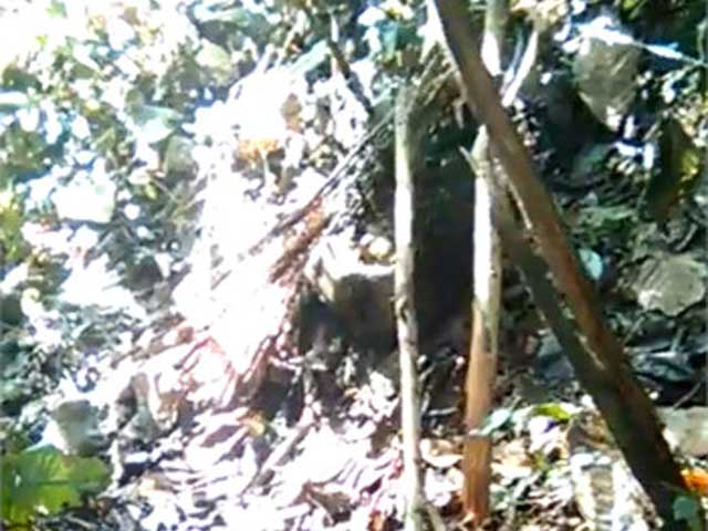 Xác nữ sinh bên bìa rừng: Lời khai đáng sợ của nghi can - 1