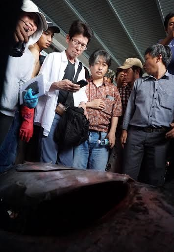Cận cảnh cá ngừ vây xanh 'khủng' gần 350kg - 4