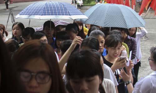 Cựu sinh viên liệt 2 chân đội mưa đi bỏ phiếu - 11