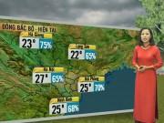 Tin tức trong ngày - Dự báo thời tiết VTV ngày bầu cử 22/5