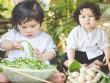 """Bộ ảnh """"cô nông dân nhí"""" 11 tháng tuổi siêu đáng yêu"""