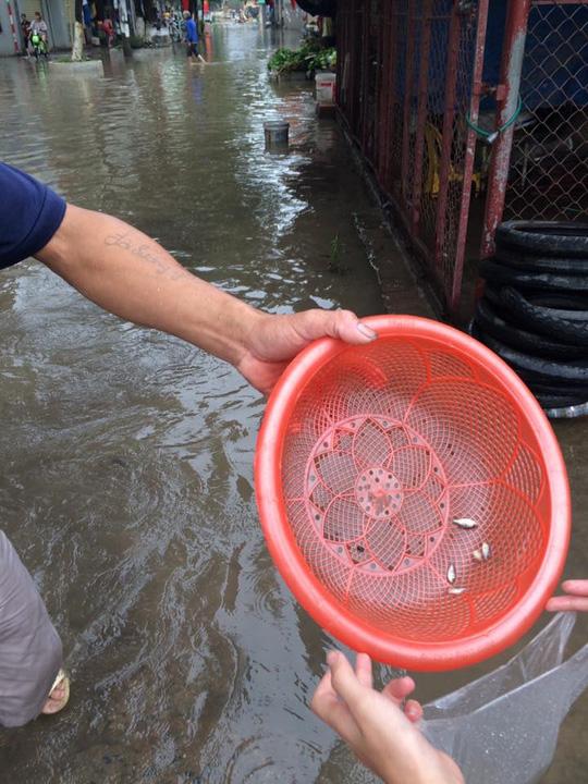 Ngộ nghĩnh cảnh người HN chèo thuyền, bắt cá trên phố - 6