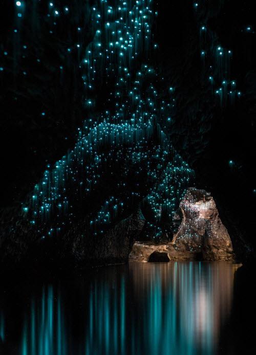 Lạc giữa hang động đom đóm kỳ ảo ở New Zealand - 6