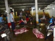 Thị trường - Tiêu dùng - Phát hiện heo nhiễm chất tạo nạc tại lò mổ lớn nhất Nghệ An