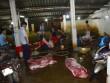 Phát hiện heo nhiễm chất tạo nạc tại lò mổ lớn nhất Nghệ An