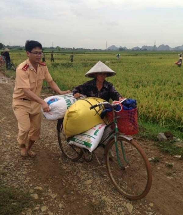 CSGT lội ruộng, ngâm mình cứu lúa trong nước lũ - 6