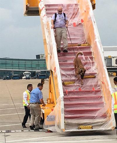 Hậu trường chăm sóc chuyên cơ TT Obama tại Tân Sơn Nhất - 1