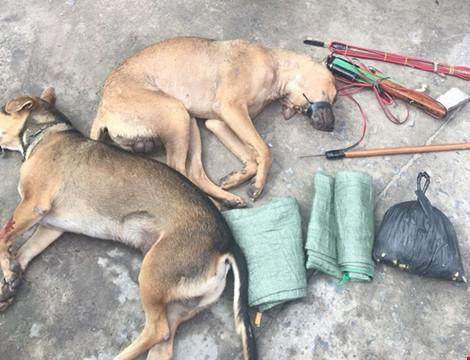 Nghi can trộm chó dùng ớt bột tấn công lực lượng truy bắt - 2