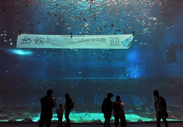 """Tỉ phú giàu nhất TQ mở công viên """"đè bẹp"""" Disney Land - 6"""