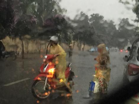 Cô gái dừng xe giữa trời mưa lớn mặc áo mưa cho cụ già - 4
