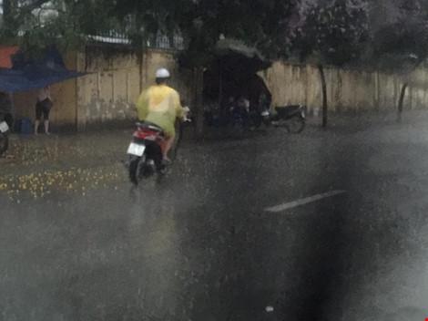 Cô gái dừng xe giữa trời mưa lớn mặc áo mưa cho cụ già - 5