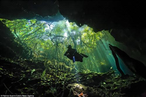 Khám phá nghĩa địa dưới nước của người Maya cổ - 3