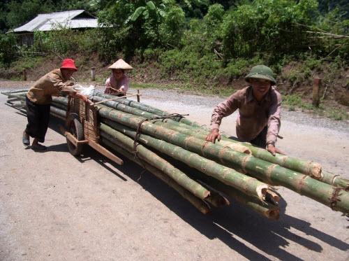 Hành trình 10 ngày khám phá miền núi phía Bắc Việt Nam - 11