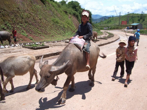 Hành trình 10 ngày khám phá miền núi phía Bắc Việt Nam - 12