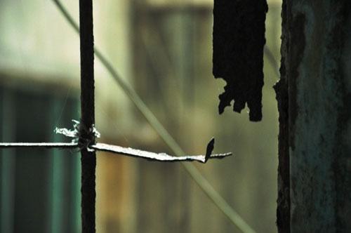 Cuộc sống lay lắt của 10 hộ dân ở chung cư hoang tàn nhất SG - 12