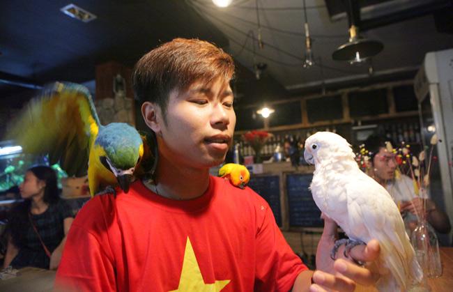 Thú chơi vẹt đuôi dài đắt đỏ nhất thế giới ở Hà Nội - 1