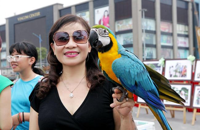 Thú chơi vẹt đuôi dài đắt đỏ nhất thế giới ở Hà Nội - 6