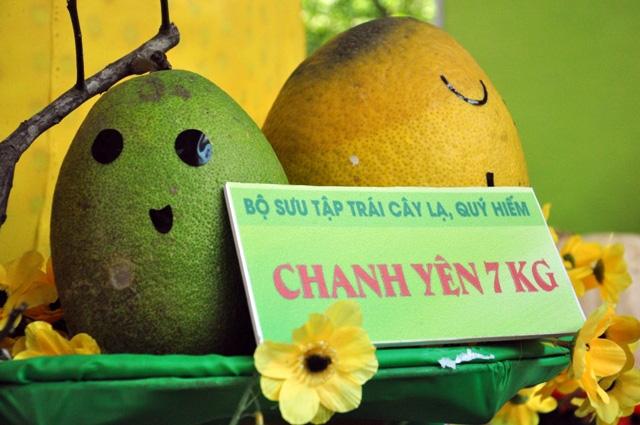 Trái cây khổng lồ hội tụ ở Sài Gòn - 4