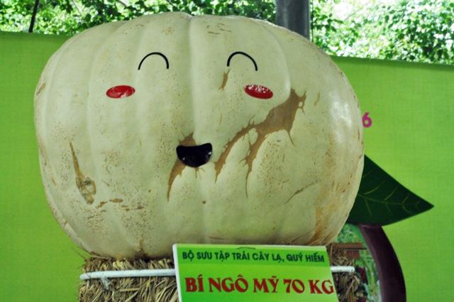 Trái cây khổng lồ hội tụ ở Sài Gòn - 2