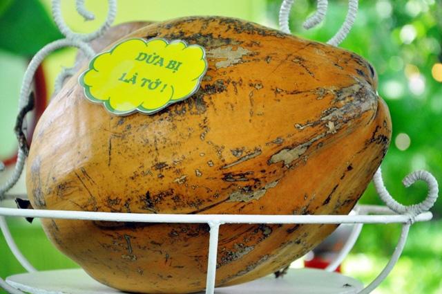 Trái cây khổng lồ hội tụ ở Sài Gòn - 13
