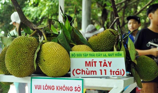 Trái cây khổng lồ hội tụ ở Sài Gòn - 14