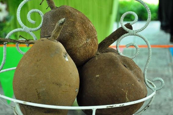 Trái cây khổng lồ hội tụ ở Sài Gòn - 16