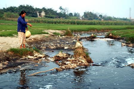 Nguy cơ suy thoái nguồn nước - 1