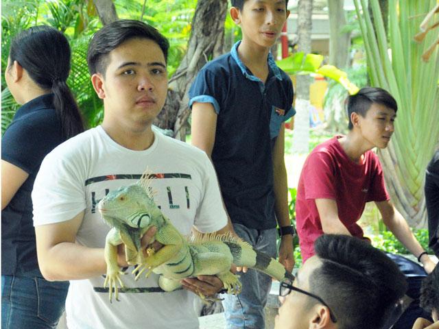 Tận thấy rồng Nam Mỹ, kỳ đà sông Nile trên đất Sài Gòn - 15
